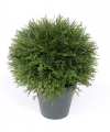 Kunst cypress bol in pot 25 cm