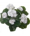 Kunst franse geranium wit 35 cm