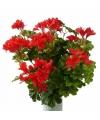 Kunst oostenrijkse geranium plant rood 40 cm