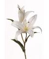 Kunstbloem lelie wit 77 cm