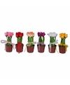 Kunstbloem zalmroze tulpen in potje 18 cm