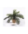 Kunstplant cycas palm 35 cm