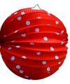 Lampion rood met witte stippen 23 cm