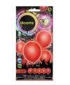 Led licht ballonnen rood 23 cm 5 stuks