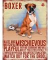 Metalen muurplaat boxer 30 x 40 cm