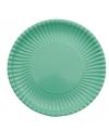 Platte kartonnen bordjes mint groen 23 cm