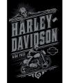Poster harley davidson 61 x 91 5 cm