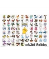 Poster pokemon soorten 61 x 91 cm