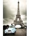 Poster romantiek in parijs 61 x 91 5 cm