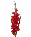 Rode kunst gladiool 102 cm
