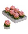 Roze roos theelichtjes 6 stuks