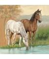 Servetten paarden 3 laags 20 stuks