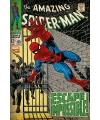 Spiderman poster 61 x 91 5 cm