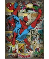 Spiderman retro poster 61 x 91 5 cm