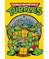 Turtles poster 61 x 91 5 cm