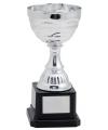 Zilveren trofee beker