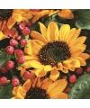 Zonnebloemen servetten 33 cm