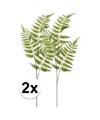 2x groene boomvaren kunstbloemen tak 85 cm