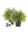 2x kunstplant bamboe mix groen in pot 25 cm