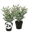 2x kunstplant olijfboompje groen in zwarte pot 35 cm