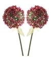 2x roze paarse sierui kunstbloemen 70 cm