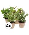 4 kruiden kunstplanten salie laurier basilicum munt in potjes