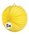 5x lampionnen geel 22 cm