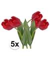 5x rode tulp kunstbloemen 48 cm
