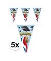 5x vlaggenlijnen geslaagd thema feestartikelen 10 meter