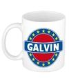 Galvin naam koffie mok beker 300 ml