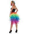 Petticoats in regenboog kleurtjes