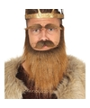 Koning baard set met snor en wenkbrauwen bruin