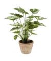 Kunstplant anthurium groen in pot 50 cm