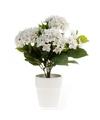Kunstplant hortensia wit in witte pot 37 cm