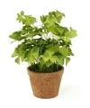 Kunstplant klavertje groen in pot 25 cm