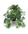 Kunstplant klimop groen in zwarte pot 30 cm