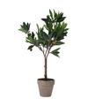 Kunstplant olijfboom in pot 54 cm