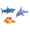 Set van 3 opblaasbare zeedieren krab dolfijn en haai