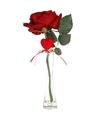 Valentijnscadeau rode roos 31 cm met hart in smalle vaas