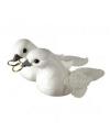 Huwelijks witte duifjes met ringen